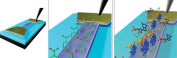 Image: An illustration of an epitaxial graphene channel biosensor for detection of targeted 8-hydroxydeoxyguanosine (8-OHdG) biomarker (Photo courtesy of 2D Materials).