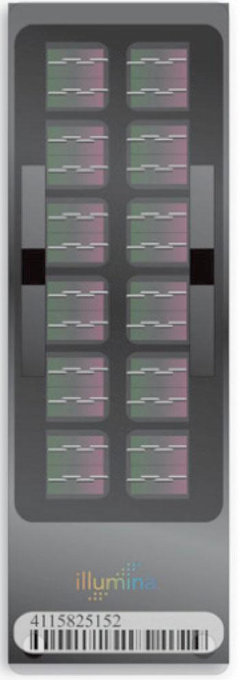Image: The Human1M-Duo BeadChip for DNA analysis (Photo courtesy of Illumina).