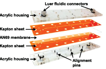 Image: The membrane-based microfluidic device for the deglycerolization of red blood cells (Photo courtesy of Oregon State University).