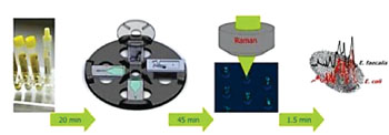 Image: The workflow of the Lab-on-a-Disc device for identifying bacteria in urine samples. From left to right (i) Urine sample from patient; (ii) Capturing bacteria in V-cup-structures on a Lab-on-a-Disk platform by centrifugation; (iii) Raman spectroscopic analysis of captured bacteria within the V-cups; (iv) Fingerprint-like spectroscopic information on the UTI pathogen (Photo courtesy of Ute Neugebauer).