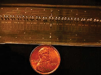 Image: The lab-on-a chip micro device is 7.62 cm long and 2.54 cm wide equal to the size of a glass microscope slide (Photo courtesy of Dr. Mehdi Ghodbane).