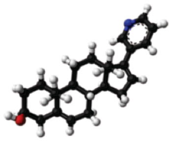 Image: Molecular model of the prostate cancer drug abiraterone (Photo courtesy of Wikimedia Commons).